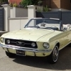 Miniature Mustang Convertible 1967 - last post by Pascal67