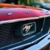 Vends Mustang 73 - last post by Redskins68